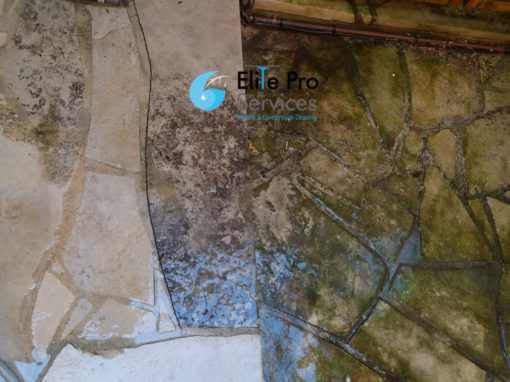 Professional Pressure Washing Services North York, ON